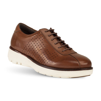 TB8149B WINTON BROWN SHOE